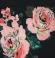 3-0107 Kleita ar rožu apdruku