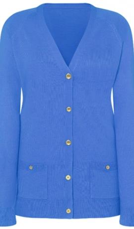 2-0317 Zilas krāsas jaciņa